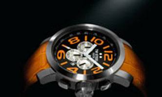 TW Steel watch fragment